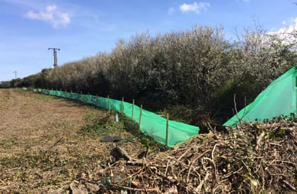 Mitigation and Management Plans - Reptile Fencing