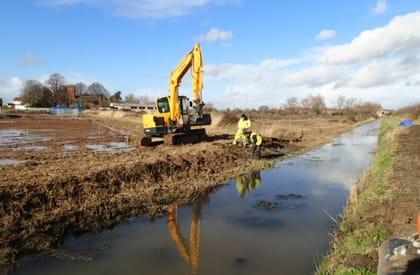 Water Vole Survey - Mitigation