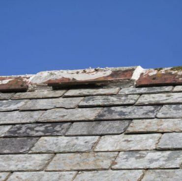 Bat access ridge tile