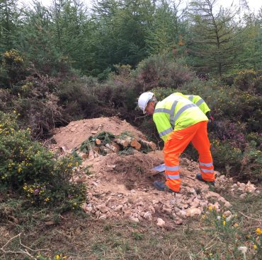 Adder mitigation on the trunk road network